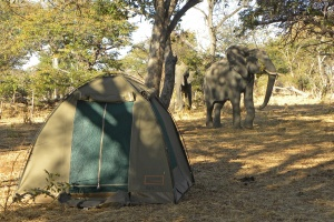 Budget Camping Tours