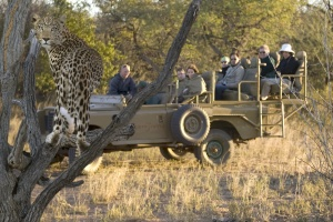 African Safaris for Seniors
