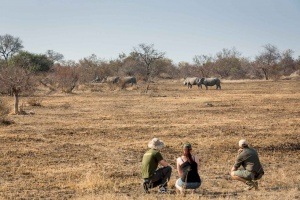 Walking Safaris & Hiking Tours